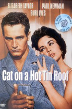 Cat On A Hot Tin Roof - Kızgın Damdaki Kedi