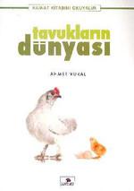 Tavukların Dünyası