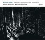 Schubert: Fantasie, Rondo, Sonate