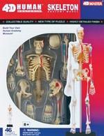 4D Master İnsan Anatomisi Puzzle - İnsan İskeleti Modeli