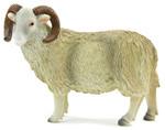 Animal Planet Çiftlik Koç Medium 387097