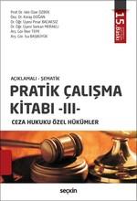 Pratik Çalışma Kitabı 3