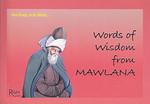 Words Of Wisdom From Mawlana