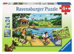 Ravensburger Puzzle Parkta Eğlence 2x24 Parça 088928