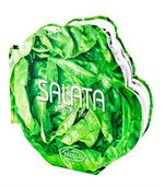 Salata - 50 Pratik Tarif