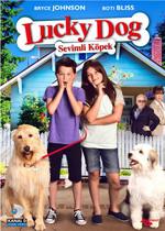 Lucky Dog - Sevimli Köpek