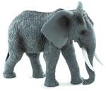 Animal Planet Afrika Fili
