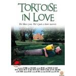 Tortoise In Love - Asik Kaplumbaga