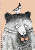 Bear Kareli Defter PP Kapak A4 80 Yp