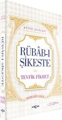 Rübab-ı Şikeste - Bütün Şiirleri