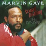 Sexual Healing: The Remixes Plak