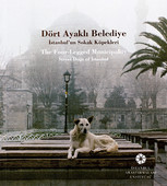 Dört Ayaklı Belediye - İstanbul'un Sokak Köpekleri