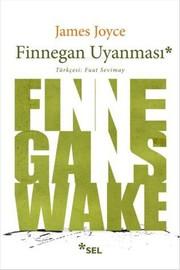 Finnegan Uyanması