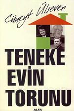 Teneke Evin Torunu