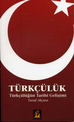 Türkçülük - Türkçülüğün Tarihi Gelişimi