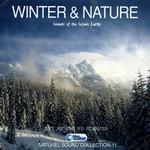 Winter Naturel