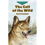 The Call of The Wild - Level 4