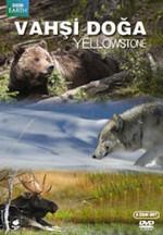 Yellowstone - Vahşi Doğa: Yellowstone