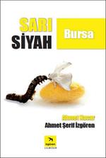 Sarı Siyah Bursa