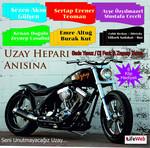 Uzay Hepari Anisina