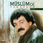 Türküler 2001