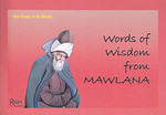 Words Of Wisdom From Mawlana