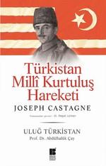 Türkistan Milli Kurtuluş Hareketi
