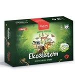 Usturlab Kutu Oyun Ekosistem