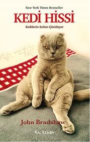 Kedi Hissi