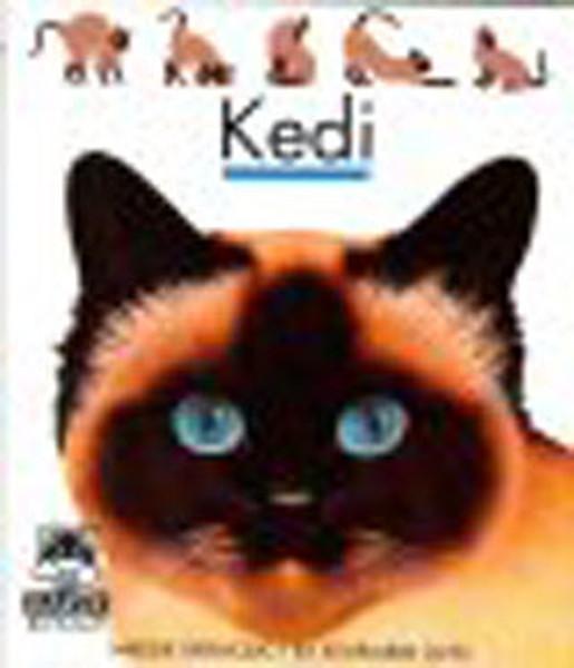 İlk Kitaplarım-Kedi.pdf