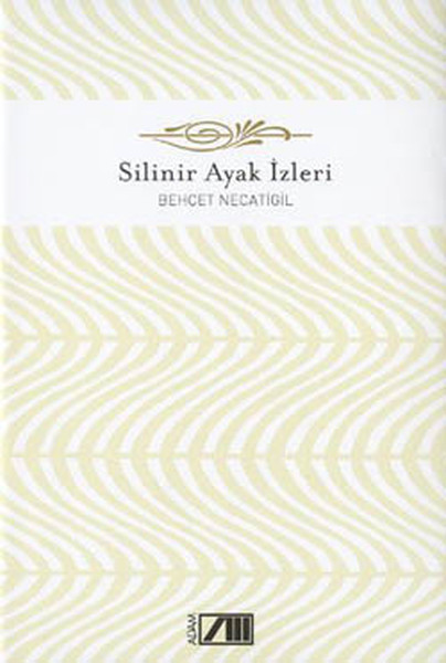 Silinir Ayak İzleri - Adam Şiir Klasikleri.pdf