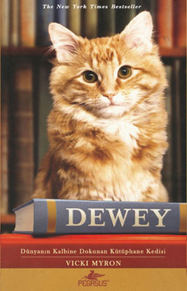 Dewey - Dünyanın Kalbine Dokunan Kütüphane Kedisi