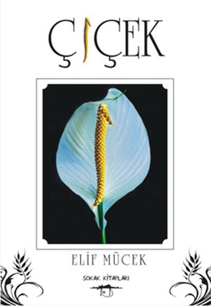 Çiçek.pdf