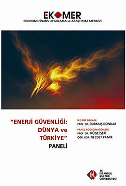 Enerji Güvenliği: Dünya ve Türkiye Paneli 2010