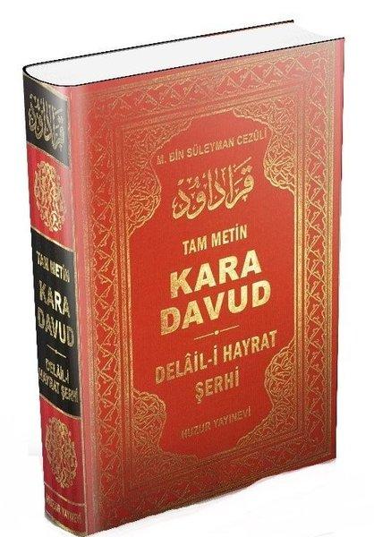 Kara Davut - Delail-i Hayrat Şerhi.pdf