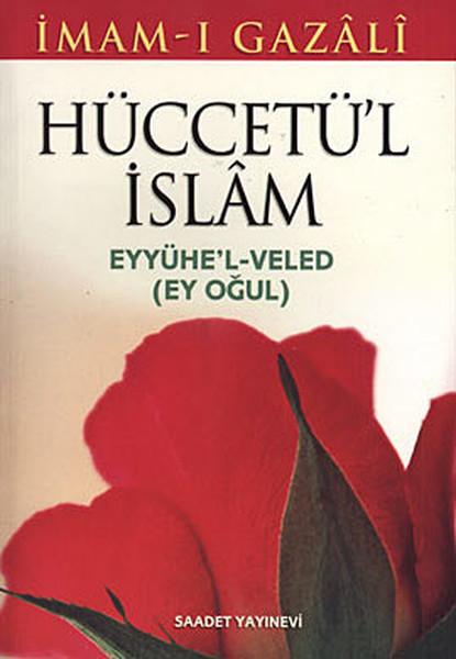 Hüccetül İslam Eyyühel- Veled.pdf