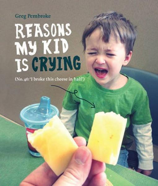 Reasons My Kid is Crying.pdf