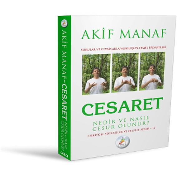 Cesaret.pdf
