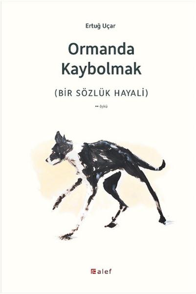 Ormanda Kaybolmak.pdf