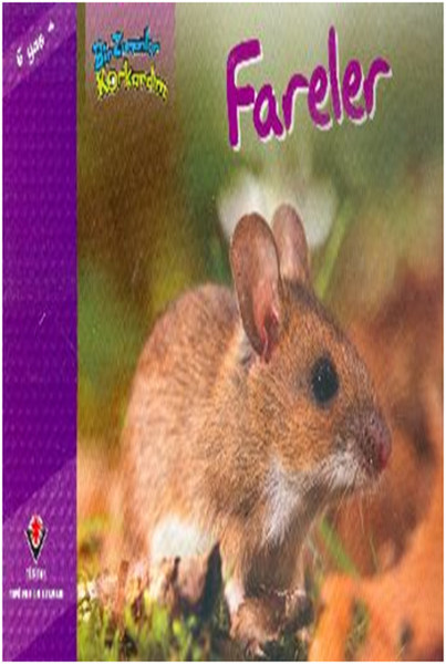İlk Okuma - Fareler.pdf