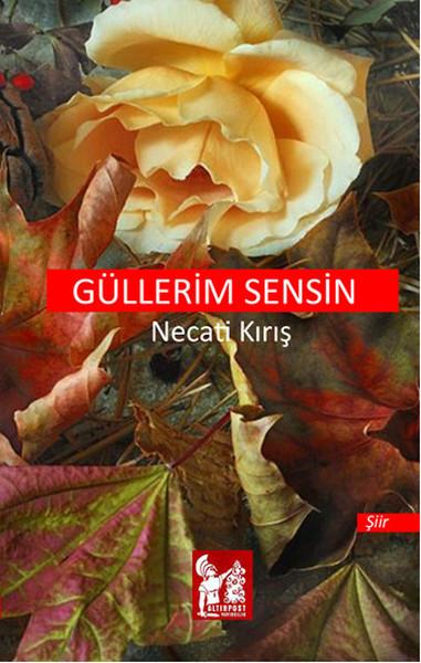 Güllerim Sensin.pdf