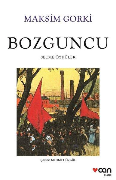 Bozguncu.pdf
