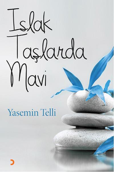 Islak Taşlarda Mavi.pdf