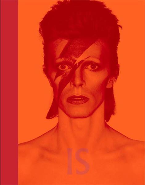 David Bowie Is.pdf