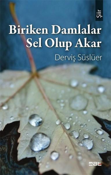 Biriken Damlalar Sel Olup Akar.pdf