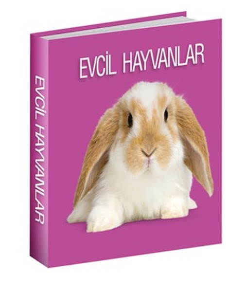 Evcil Hayvanlar.pdf