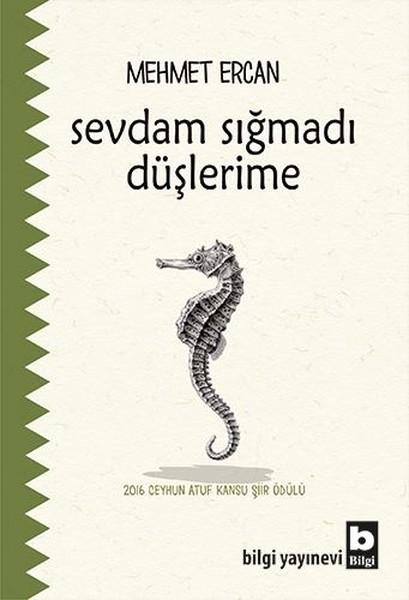 Sevdam Sığmadı Düşlerime.pdf