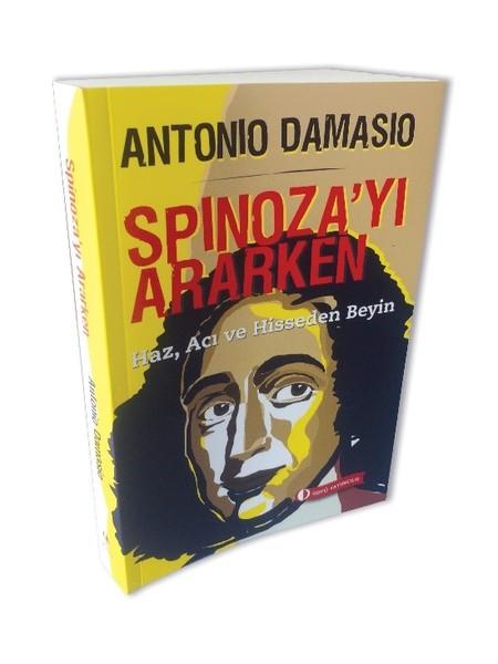 Spinozayı Ararken.pdf