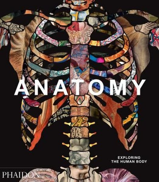 Anatomy: Exploring the Human Body (Explorer).pdf