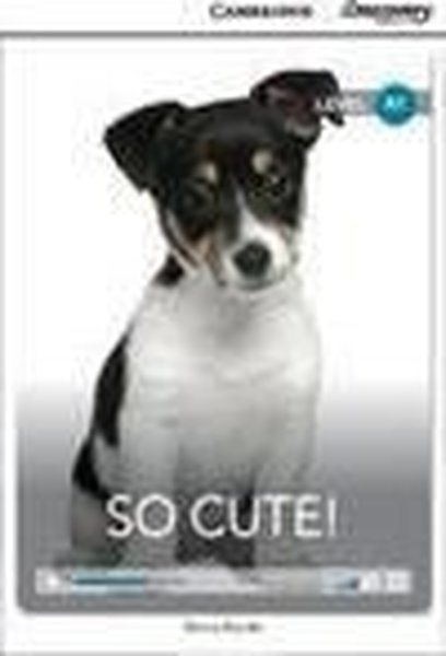 A1 So Cute! (Book with Online Access code) Interactive Readers.pdf
